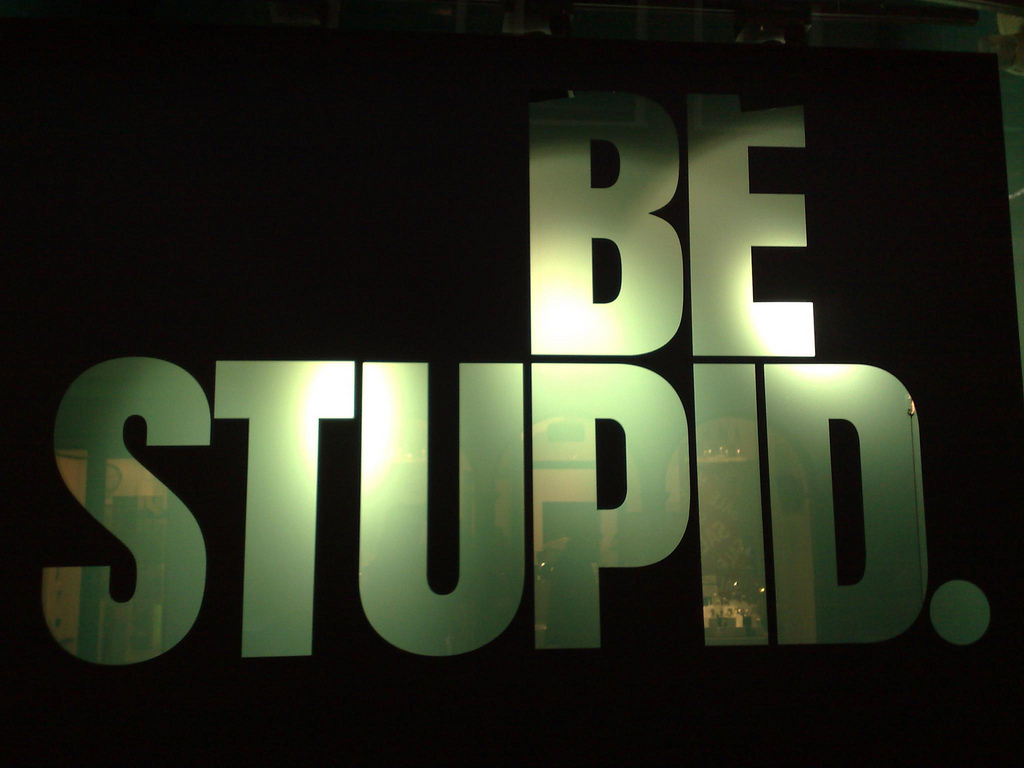 By Michiel from Amsterdam, The Netherlands (Be stupid @ Amsterdam) [Public domain or CC BY 2.0 (https://creativecommons.org/licenses/by/2.0)], via Wikimedia Commons