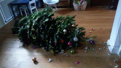 https://commons.wikimedia.org/wiki/File:Broken_christmastree.jpg#file